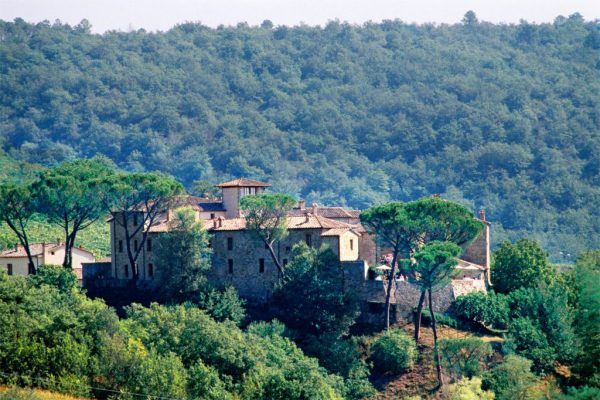 Explore the Chianti Countryside