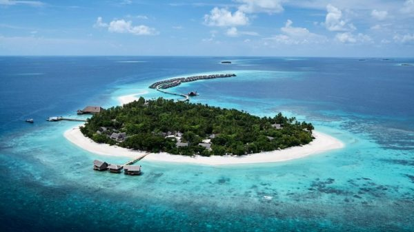 JOALI Maldives' marine biologist protects reef with coral nursery