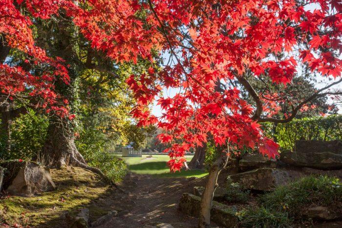 Grantley Hall Gardens 2